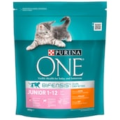 Purina ONE Junior 1 - 12 Monate Huhn 800 g