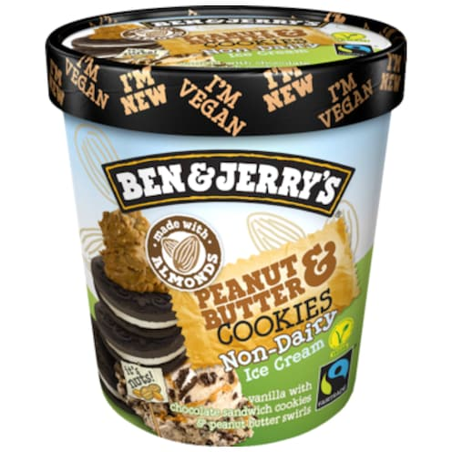 BEN & JERRY'S Peanut Butter & Cookies 500 ml