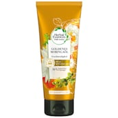Herbal Essences Goldenes Moringaöl Spülung 200 ml