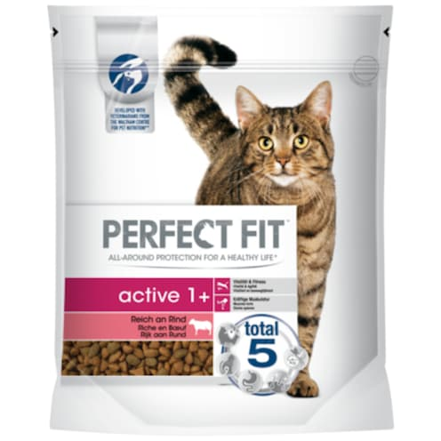 PERFECT FIT Active 1 + 750 g