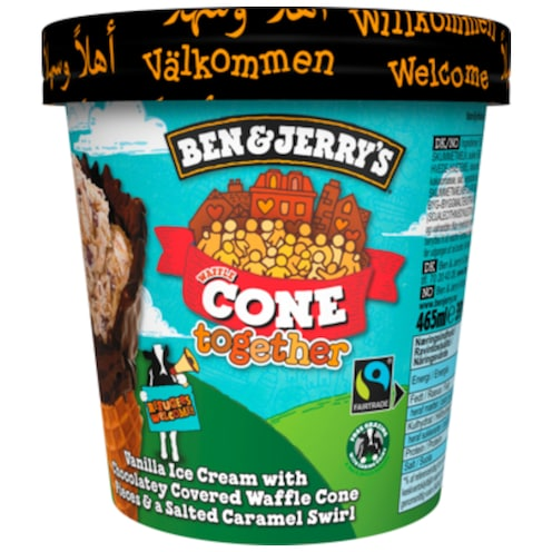BEN & JERRY'S Cone Together 465 ml