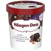 Häagen-Dazs Dark Chocolate & Caramelized Almond 460 ml