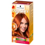 Schwarzkopf Country Colors 45 Toscana Herbstrot 113 ml