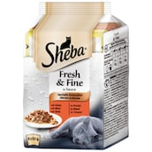 Sheba Fresh & Fine in Sauce - Herzhafte Komposition 6 x 50 g